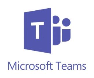 Microsoft Teams software IT