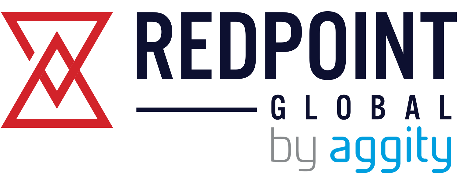 REDPOINT GLOBAL by aggity software Business Intelligence / CPM