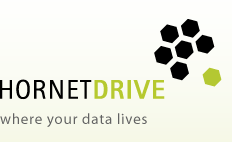 HORNETDRIVE software IT